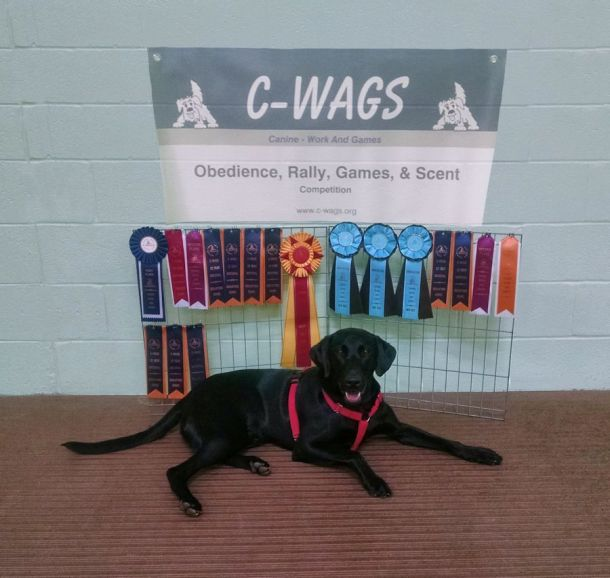 4-30-17 Cwags National sm