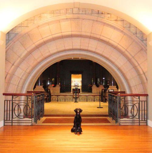 1-25-17-art-museum-arch-sm
