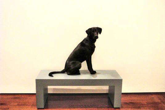 1-25-17-art-museum-sm
